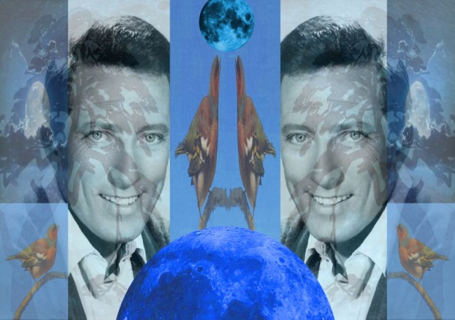 Andy Williams 2012