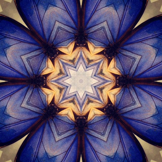 Kaleidoscope - Butterflywings