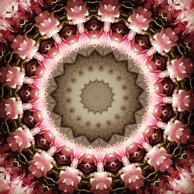 Kaleidoscope - Cherry Blossom I - Joakim Lund