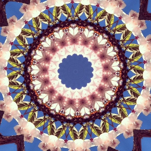 Kaleidoscope - Cherry Blossom II - Joakim Lund