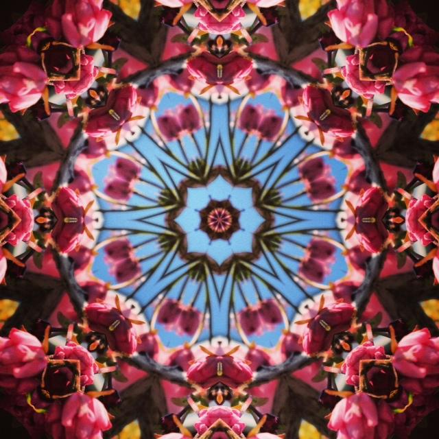Kaleidoscope - Cherry Blossom III - Joakim Lund