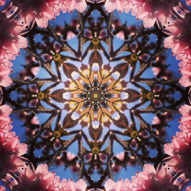 Kaleidoscope - Cherry Blossom IV - Joakim Lund