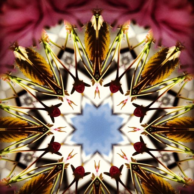 Kaleidoscope - Joakim Lund