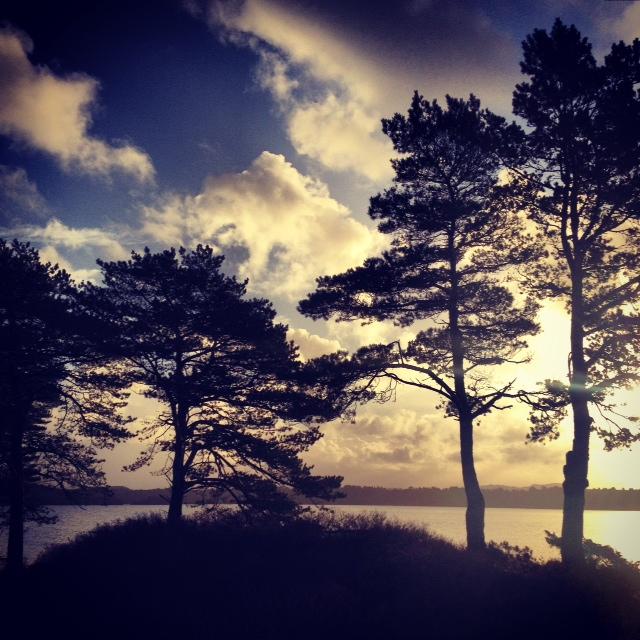 Landscape by Joakim Lund XXV