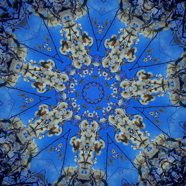 Kaleidoscope V by Joakim Lund 2015