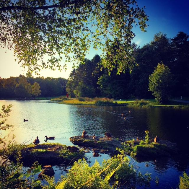 Stavanger X by Joakim Lund 2015