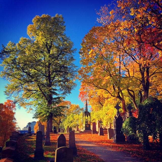 Oslo Autumn I by Joakim Lund 2015