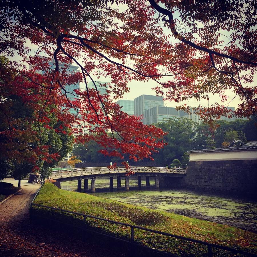 Autumn in Tokyo by Joakim Lund 2017
